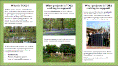 TOE2 – Environment Improvement