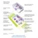 Housing Design for the Elderly